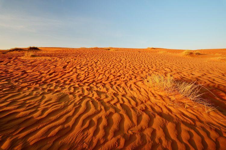 Wahiba Sands à Oman